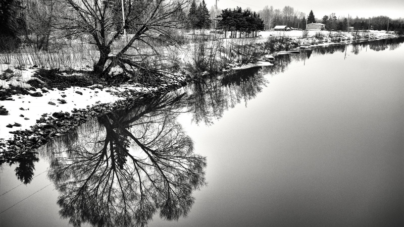 Stan Williams Image River in the winter